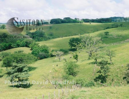 Agricultural Development Of Cloud Forest