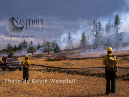 Firemen And Wildfire In Big Timber Forest