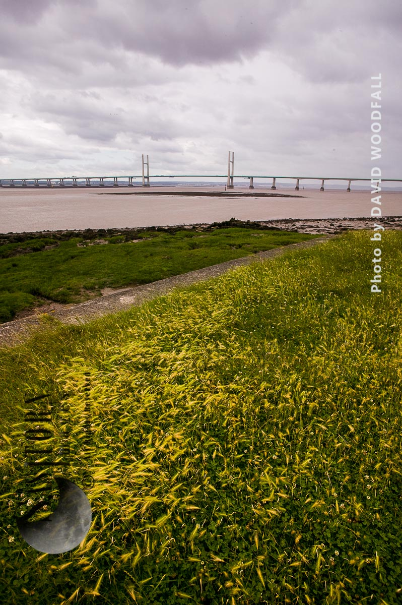 Mudflats at Severn Estuary from Portskewett